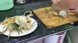 用这方法活螃蟹1分钟就能杀好,加盖下锅煎熟,味道美极了