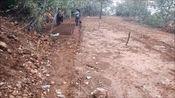 羊肚菌专家贾乾义在济南长清区现场指导羊肚菌栽培