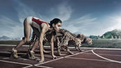 百米9.58秒是人类极限,放在动物界算什么水平?看完心情复杂