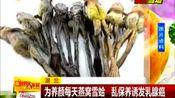 为养颜每天燕窝雪蛤 乱保养诱发乳腺癌