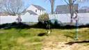 【优酷搞笑】会跳绳的狗www.72jz.com 免费建站