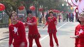 2017年2月5号兰陵县广场舞辅导员【国家农业公园】展演《中