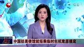 中国驻美使馆就搭乘临时包机意愿摸底:将优先安排在美小留学生回国
