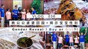Vlog 036 脆公公婆婆回国+揭示宝宝性别