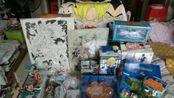 [玩具废柴]分享 番外篇 日本购物 大阪 京都 东京 日本桥 秋叶原 龙珠篇