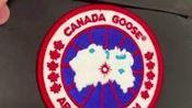 CANADA GOOSE Mystique 22款大鹅 四级防寒狼毛领加拿大鹅全方位真假对比,如何防止被骗?