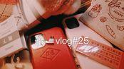 船vlog25|做帆布包|久违的做饭节目|跟戏的一个月|下雪的北京|Kindle oasis3开箱|佳能产品1300|TN手帐