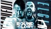 IMPACT Wrestling Bound For Glory 2019.10.20 丸藤正道 vs. Michael Elgin