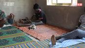 尼日利亚爆发新一轮拉沙热疫情 已致70人死亡
