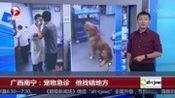广西南宁:宠物急诊 他找错地方