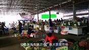 实拍珠海最大农贸市场:红旗镇中心市场,应有尽有!