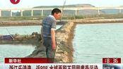 浙江乐清湾:近八成水域面积不同程度污染