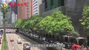 为什么香港人宁愿住棺材房,也不愿来大陆发展,当地人是这么说的
