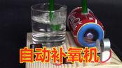 小鱼缸用不着大的充氧器怎么办,小知识教会你手动制作大鱼缸能用