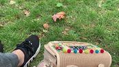 [vlog]伦敦最棒的ritz下午茶+白金汉宫+达芬奇画展+皇家马厩的生日vlog