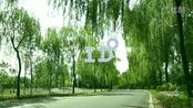 DaTangFilm(大唐兄弟)sunyubo&jingjing 婚礼微电影 <I do>(辽宁铁岭)