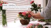 花篮教程4:韩式小花篮制作【更多花艺培训资料请关注公众号:鲜花24小时花艺资源大全导航】