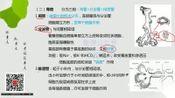 口腔助理 执业医师 口腔组织病理学(4)口腔医学 口腔易考