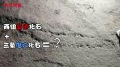 """湖北宜昌:地球上的第一个""""脚印"""",是5.5亿年前它留下的"""