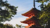 京都大阪旅行照片(nikon z7+24-70 F4)