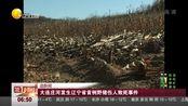 追新闻:大连庄河发生辽宁省首例野猪伤人致死事件 第一时间 171111
