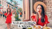[Nessie] 去雅加达的几天 ft. WINNER | 旅行日记 | 印尼VLOG | dearnessie