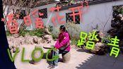 三线城市滁州肺炎疫情结束,琅琊山景区对外开放,辰子春日踏青拍VLOG,顺便转圈圈,哈哈