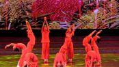 CETV绽放的向阳花2019少儿新春盛典(徐州站)—《九儿》舞动全城 华艺舞蹈学校