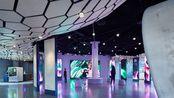 Amazon西雅图总部-TheSpheres 访客中心-YCD案例介绍