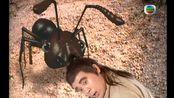 【聊斋·陆判·P8】陆判为考验书生,命其在日落之前远赴千里将妻子的换下的人头取回,关键时刻,书生之前救过的小蚂蚁们来报恩帮忙了