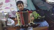 hzp.李昊泽手风琴,哇哈哈