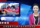中国好项目 吉林松原市农副产品交易市场项目