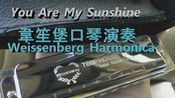 【口琴谱】You Are My Sunshine(韋笙堡口琴演奏)