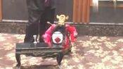 泉州提线木偶戏受邀到加州圣地牙哥州立大学演出