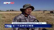 长春九台区今年水稻产量预计超4亿斤,收割工作月底前将全部结束