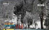 [第一时间]湖北荆门:持续大雪导致用电量大增