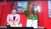 安徽省《黄梅戏优秀青年演员演唱会》节目选录,录制:甜羊老罗