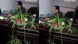 张家口怀安第三堡乡党委书记辱骂老百姓微视频