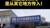 武汉华南海鲜市场并非新冠病毒发源地!11月下旬或已人传人!#疫情全知道