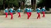 周思萍最新广场舞 最美西藏 舞蹈教学