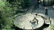 萧景睿把天泉剑法练得出神入化,豫津拍手叫好,飞流却露出怪脸