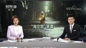 """[朝闻天下]强台风""""海贝思""""登陆日本 我驻日使馆发布安全提醒"""
