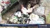 刚果(金):中国维和工兵分队高标准通过首次作战效能核查