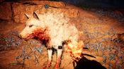 孤岛惊魂:原始杀戮40 带着剑齿虎捕抓雪血狼