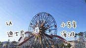 【芝芝】VLOG|加州迪士尼+圣塔莫妮卡海滩+小东京