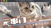 【Aha云串门】武汉百步亭的留守宠物:上门像探险,代喂人心里也慌