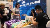【河南】开封举行伴侣猫优生繁育展140只世界顶级名猫比赛