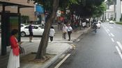 广州海珠区到天河区,广州市中心最繁华的街景