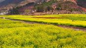 四川省最具魅力的三座城市,成都、德阳和绵阳,你最喜欢谁?