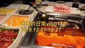 诸诸的日常vlog17之2019.12.21-12.27 一周生活记录/一人食料理制作/看陈粒演唱会/撸猫/吃烤肉/海底捞/下班日常